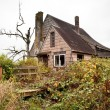 Abandoned overgrown house — Stock Photo