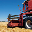 Combine harvester on field - Stock Photo