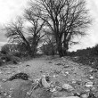 Dry riverbed bw - Stock Photo