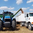 Auger Attached to Blue Tractor Unloads Kansas Wheat — Stock Photo #3876407