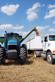 Auger Attached to Blue Tractor Unloads Kansas Wheat — Stock Photo