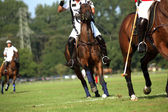 Polo competitie — Stockfoto