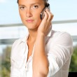 Business woman on the phone — Stock Photo #3894945