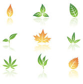 Leaves icons — Vetor de Stock