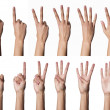 Stock Photo: Female hands counting