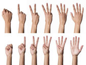 Female hands counting — Stock Photo