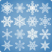Realistic Natural Snowflake Set — Stock Vector