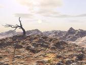 мрачное бедленд — Стоковое фото