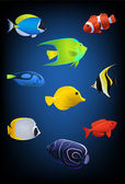 Vector fish collection — Stock Vector