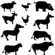 Farm Animal Set — Imagen vectorial