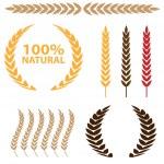 Wheat Icon Set — Stock Vector