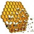 Honey Bees — Stock Vector