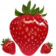 Vector de stock : Realistic Strawberry