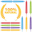 Colorful Wheat Icon Set — Stock Vector