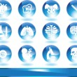 Royalty-Free Stock Vector Image: Biology Icon Set