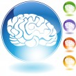 Brain Crystal Set - Stock Vector