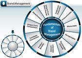 Brand Management Wheel — Stock Vector