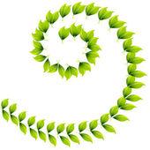 Spiral Leaf Design — Stock Vector
