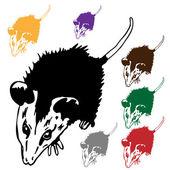 An image of a possum. — Stock Vector