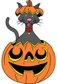 Cat in Pumpkin — Stock Vector