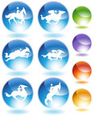 Horse Icon Crystal Set — ストックベクタ