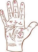 Carte de lecture palm — Vecteur