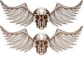 Winged Skulls — Stock Vector