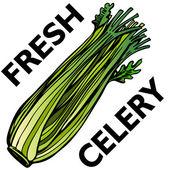 Celery — Wektor stockowy