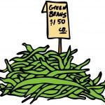 Green Beans — Stock Vector
