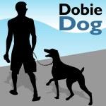 Man Walking Doberman Pinscher Dog — Stock Vector