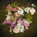 Garden flowers — Stock Photo #4042454