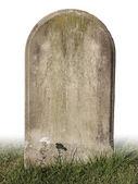 Pojedynczy kamień grób — Zdjęcie stockowe