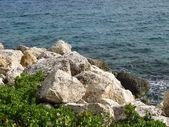 Skalisty brzeg — Zdjęcie stockowe