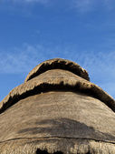 Mexican straw roof — Stock Photo