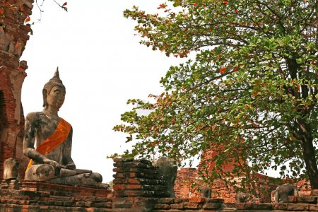 Постер, плакат: Monuments of buddah ruins of Ayutthaya, холст на подрамнике