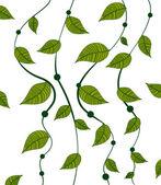 Pattern pea vines