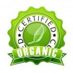 thumbnail of Organic stamp