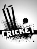 Výstřední kriket pozadí s razítkem a kožený míč