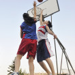 Постер, плакат: Woman basketball