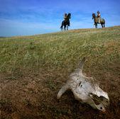 Jezdci lukostřelci v stepi vtipu kráva lebky