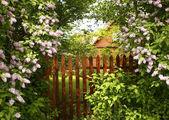 Un cancello segreto conduce il giardino è circondato da fioritura lillà