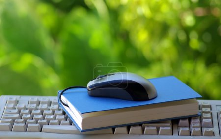 Mouse with book and keyboard