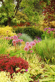 Colorful lush garden