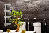 Bonsai koupelna