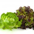 thumbnail of Lettuce assortment