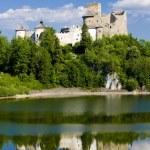 thumbnail of Niedzica Castle