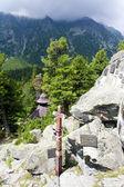 Friedhof in der hohen Tatra, Slowakei