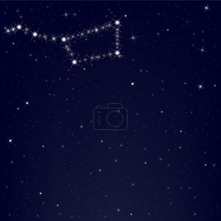 Постер, плакат: Dark Blue Sky With Constellation Of Ursa Major, холст на подрамнике