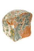 Plesnivý chléb