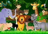 Vector illustration of animal in the jungle